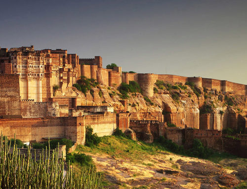 Luxury and Individual Vacation in India