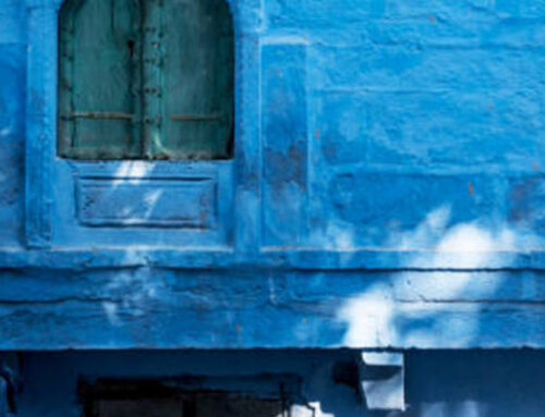 Travel Guide To The Blue City – Jodhpur