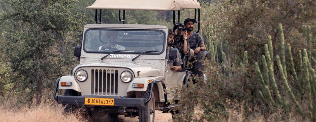 raas-chhatrasagar-wildlife-safari