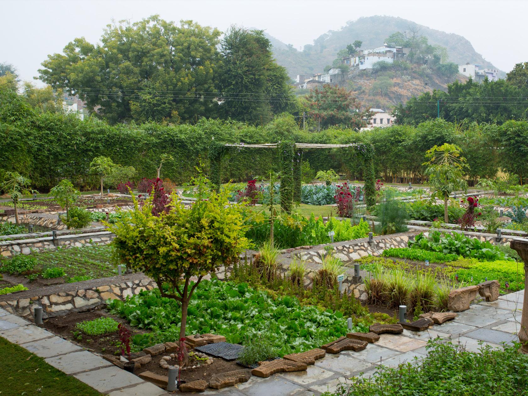 Raas Devigarh Garden Dining